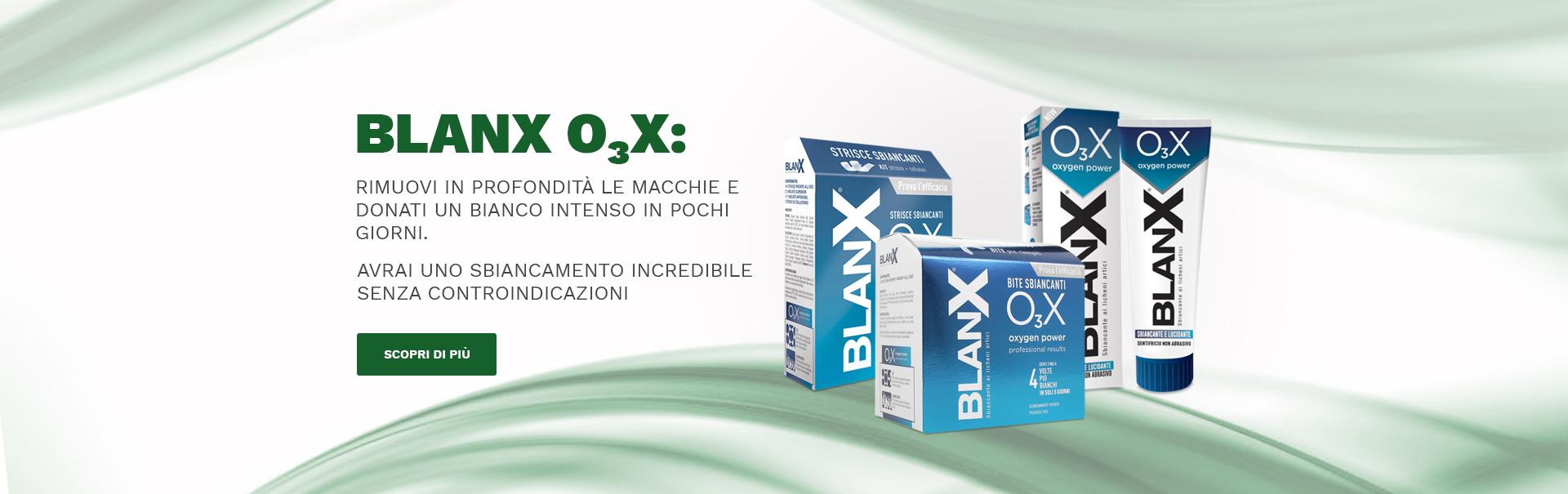 catalog/slide/blanx.jpg